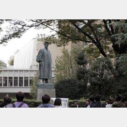 半年後、早大も夢じゃない!?(C)日刊ゲンダイ