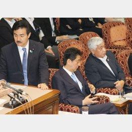 参院安保法案特別委の安倍首相ら(C)日刊ゲンダイ