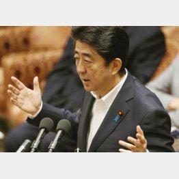 平和安全法制特別委で答弁する安倍首相(C)日刊ゲンダイ