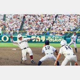 満員のスタンドを背にハツラツとプレーする清宮(C)日刊ゲンダイ