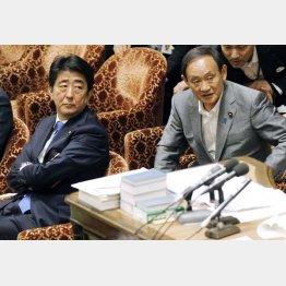 安倍首相(左)と菅官房長官(C)日刊ゲンダイ