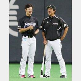 斎藤佑樹と栗山監督
