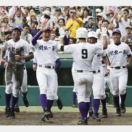 サヨナラホームランで8強入りした関東一(C)日刊ゲンダイ