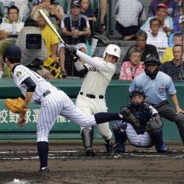 打球はライトスタンドへ一直線(C)日刊ゲンダイ