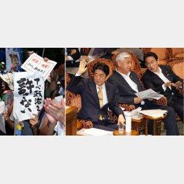 国民は「安倍政治」を嫌悪している(C)日刊ゲンダイ