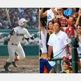 息子の幸太郎(左)をスタンドで応援する父・清宮克幸氏(C)日刊ゲンダイ