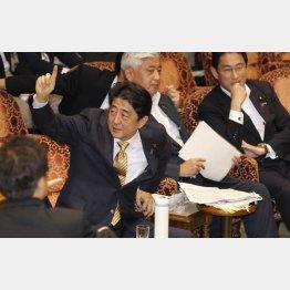 安倍首相は「戦争法案」と呼ばれるのが心底嫌(C)日刊ゲンダイ