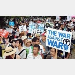 表参道を行進する「SEALDs」のメンバーら(C)日刊ゲンダイ