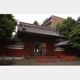 東京大学では推薦入試がスタート(C)日刊ゲンダイ