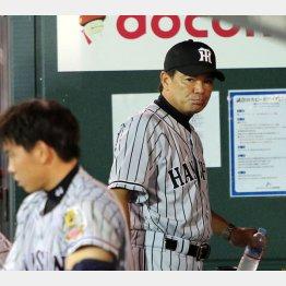 広島に連敗で渋い表情の和田監督