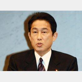「強く抗議した」と岸田外相(C)日刊ゲンダイ