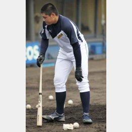 試合前の練習中、左膝を気にする清宮(C)日刊ゲンダイ
