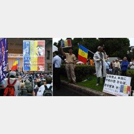 12万人国会前デモでも三色旗が(C)日刊ゲンダイ