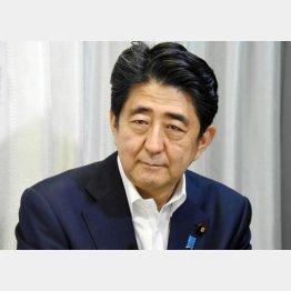 安倍首相の答弁はまるで謎かけ(C)日刊ゲンダイ