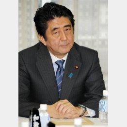 2013年に就活後ろ倒しを要請した安倍首相(C)日刊ゲンダイ