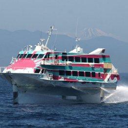 金曜夜発 客船で都心から一番近い島へ一人旅