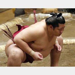 平幕でも日本人力士の星