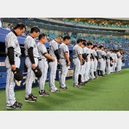 24日の試合前、中村GMを偲び黙祷する阪神ナイン