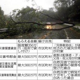 台風、竜巻など自然災害時には雑孫控除が受けられる