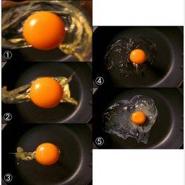 卵がフライパンに落下する様子(C)日刊ゲンダイ