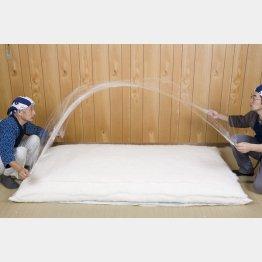 木綿100%布団(提供写真)