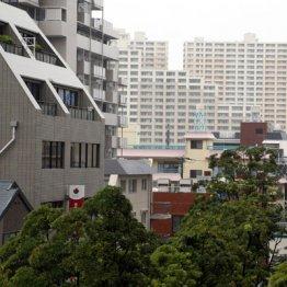【市川】近隣の23区エリアより不動産価格が高い