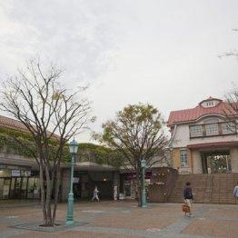 【田園調布】当初は人気がなかった高級住宅街