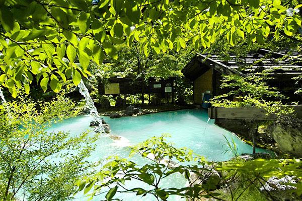 泡の湯旅館の混浴露天風呂(提供写真)