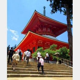 高さは48.5メートル(根元大塔)(C)日刊ゲンダイ