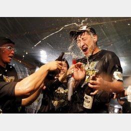 祝勝会でビールを浴びる内川(C)日刊ゲンダイ