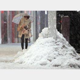 今年は大雪より洪水に警戒か…(C)日刊ゲンダイ