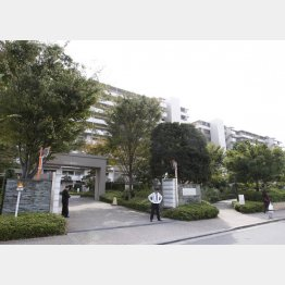 データ偽装問題でマンション購入に不安(C)日刊ゲンダイ
