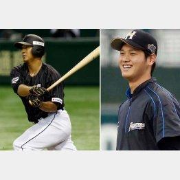 大谷(右)と中田翔にヤンキースも熱視線(C)日刊ゲンダイ