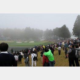 濃霧のために最終日の試合は中止となった…(C)日刊ゲンダイ