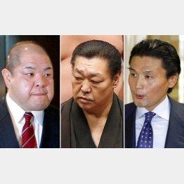 左から八角親方、北の湖理事長、貴乃花親方(C)日刊ゲンダイ