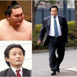 相撲協会内部の権力闘争は激化(C)日刊ゲンダイ