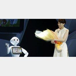 ソフトバンクの人型ロボット「ペッパー」は大モテ(C)日刊ゲンダイ