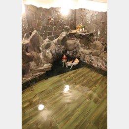 下部温泉「源泉館」(提供写真)