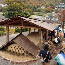 明治28年築造、長さは47メートル(屋根の下が登り窯)/(C)日刊ゲンダイ