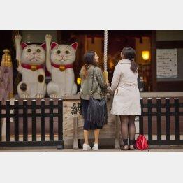 若い女子が多い今戸神社(C)日刊ゲンダイ