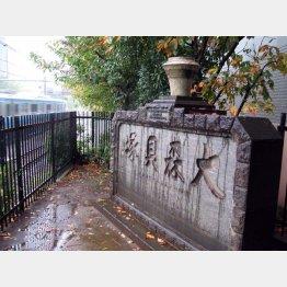 品川側の「大森貝塚」碑(C)日刊ゲンダイ