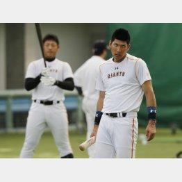 入団時は共に期待されたのに(左は岡本)/(C)日刊ゲンダイ
