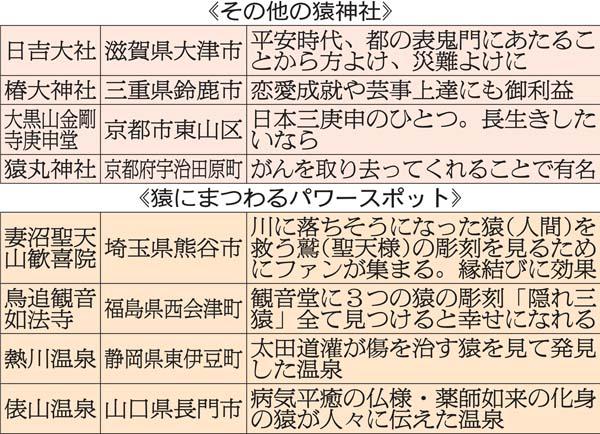 その他の猿神社(C)日刊ゲンダイ