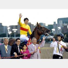 所有馬も大活躍(昨年、JBCクラシックを連覇したコパノリッキー)/(C)日刊ゲンダイ