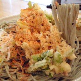 【がんぎ新川一丁目店】本場へぎ蕎麦&揚げたてかき揚げに大満足