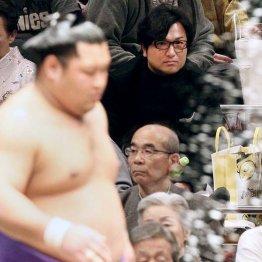 大相撲初場所をプライベートで観戦する由伸監督(C)日刊ゲンダイ