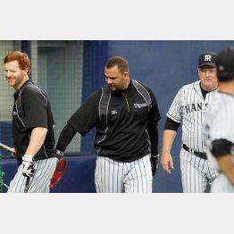 阪神はコーチまで助っ人(右はオマリーコーチ)/(C)日刊ゲンダイ