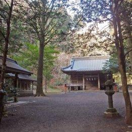 <第3回>浅子は御殿場の別荘で村岡花子、市川房枝を育てた