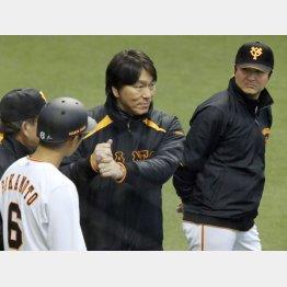 坂本(左)にアドバイスする松井の横で新監督は…(C)日刊ゲンダイ