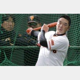 松井臨時コーチと内田打撃コーチが見守る中、バッティング練習(C)日刊ゲンダイ